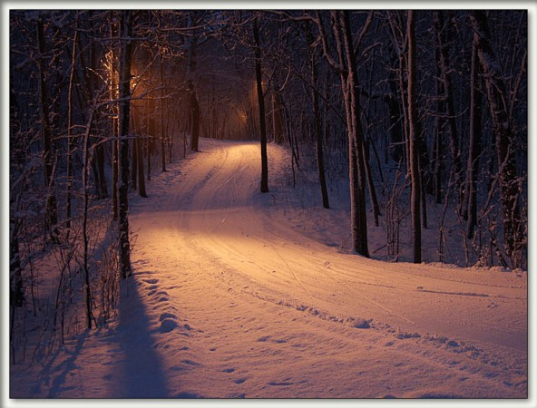 A Snowy Road at Night